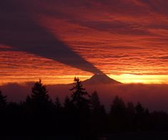 Mt. Rainier at sunrise casting its shadow on the clouds above. This is pretty awesome.