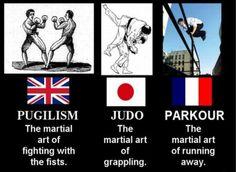 france martial art vs england and japan :)