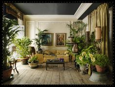 Houseplants were originally a Victorian fad, but this interior pairs house plants with a Georgian feel.