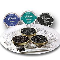 Frischer Kaviar vom sibirischen Stör aus bester Zucht