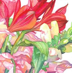 Alstroemeria and Snapdragons : Tracy Lewis Art