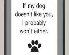 If my dog doesn't like you, I probably won't either 11 x 14 Inspiration Print