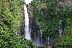 Maria Christina falls - one of majestic falls in the Philippines. Mindanao, More Photos, The Good Place, Waterfall, Travel Photography, Island, Explore, Adventure, Park