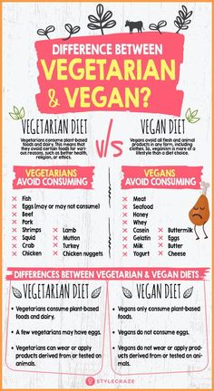 What Is The Difference Between Vegetarian And Vegan Diets? What Is The Difference Between Vegetarian And Vegan Diets? organic What Is The Difference Between Vegetarian And Vegan Diets? Vegetarian Vs Vegan, Becoming Vegetarian, Vegetarian Lifestyle, Going Vegetarian, Going Vegan, Vegan Food List, Benefits Of Vegetarian Diet, Vegetarian Facts, Vegetarian Italian
