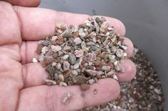 Note how large the particulates are and how loose the granules sit in the palm of your hand.