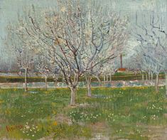 Orchard in Blossom Plum Trees Vincent van Gogh art for sale at Toperfect gallery. Buy the Orchard in Blossom Plum Trees Vincent van Gogh oil painting in Factory Price. Vincent Van Gogh, Claude Monet, Tree Canvas, Canvas Art, Fleurs Van Gogh, Desenhos Van Gogh, Van Gogh Arte, Van Gogh Pinturas, Impressionist