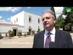 FOGLIE TV - Enovitis in Campo: a un mese dall'iniziativa, si scaldano i ...