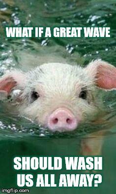 DMB~ Pig