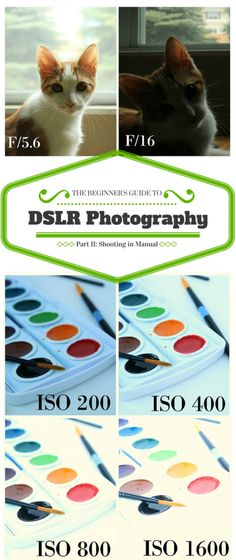 The Beginner\'s Guide to DSLR Photography: Shooting in Manual Mode
