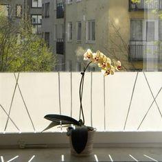 Vass Deko-Fensterfolie von Maria Liv aus Göteborg hat schilfartige Linien auf weißem Hintergrund als Motiv. Diese selbsthaftende Fensterfolie aus Schweden wertet Ihre Fensterbank optisch auf und ist zudem ein Sichtschutz vor neugierigen Blicken. Dekorfolien werden oft an Fenstern an belebten Straßen, Fenstern am Gang oder im Badezimmer von Innen an der Scheibe angebracht.