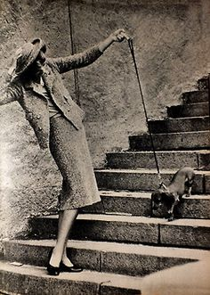 fashionable dachshie navigating stairs... Chanel 1957, Photo by Frank Horvat