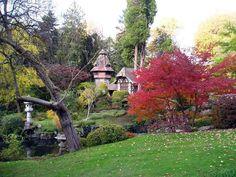 Automne au parc oriental de Maulevrier / Communauté GEO / © Francis Denecheau Belle Photo, Golf Courses, Japanese Gardens, France, Photos, Plants, Most Beautiful Gardens, Park, Drill Bit