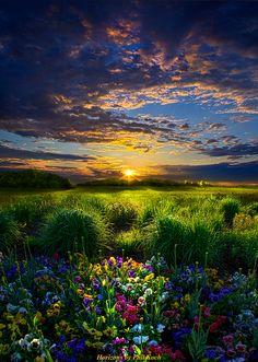Beautiful Nature!!!