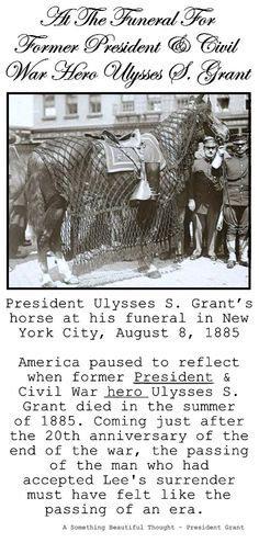 President Ulysses S. Grant's horse at his funeral in New York City, August American Presidents, Us Presidents, American Civil War, American History, Civil War Heroes, Ulysses S Grant, War Horses, Presidential History, Military Careers