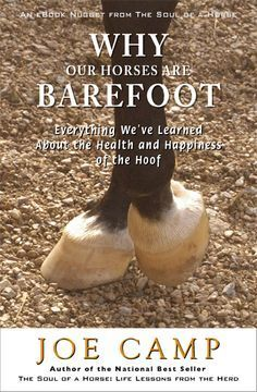 Why Barefoot Horses? From The Soul of a Horse. A longer, happier, healthier life for all horses.