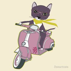 Image result for cat on a scooter