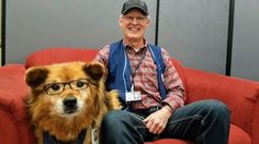 Rusty Winnipeg's glasses-wearing hospital therapy dog to be honoured with ceremony