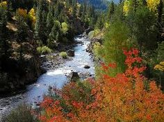 One of my favorite places to camp-Poudre Canyon, Colorado!