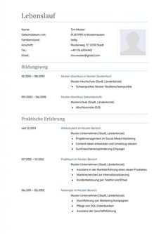 CV template in modern, friendly look as free download.