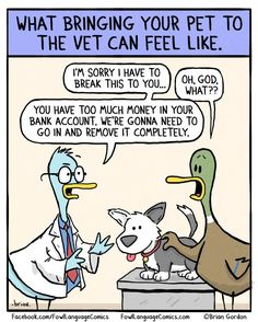 Visiting the vet // tags: funny pictures - funny photos - funny images - funny pics - funny quotes - Funny Cartoons, Funny Comics, Funny Jokes, Hilarious, Funny Images, Funny Photos, Animal Memes, Funny Animals, Animal Funnies