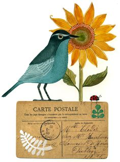 Birds & Blooms 180 Desk Notes: Artwork by Geninne Bird Illustration, Watercolor Illustration, Painting & Drawing, Watercolor Paintings, Watercolor Paper, Art Fantaisiste, Blog Art, Bird Drawings, Art Store
