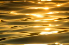 Liquid gold by Marilena Anastasiadou #Photography