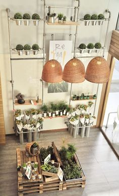 Modern and contemporary industrial design ideas could be made with palets too. Inspiring shop and great lighting.
