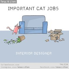 Important Jobs Cats Do Every Day - World's largest collection of cat memes and other animals Cute Cats, Funny Cats, Cats Humor, Funny Horses, Adorable Kittens, Crazy Cat Lady, Crazy Cats, Cat Empire, Lion Cat