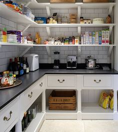 I like the idea of having a pantry with counter space and plugs