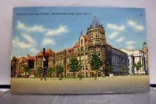 New York NY NYC Museum Natural History Postcard Old Vintage Card View Standard