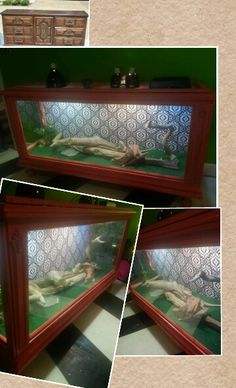 Dexter, The Bearded Dragon's New Home / Cage / Enclosure  Before And After Interiors Dresser to Bearded Dragon Reptile Home