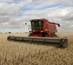 I used to ride in a combine a lot when I was little. Loved it.
