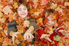 Cuentos infantiles cortos: Por qué se caen las hojas de los árboles