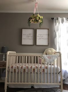 Neutral nurseries fo