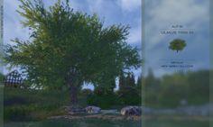 Sims 4   Ulmus Tree as Default Windenburg Oak #alfsi visual details plant override EP02