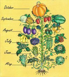 Spring through fall, a growing chart.