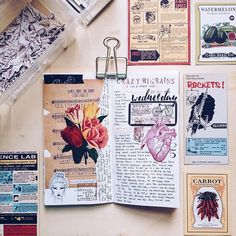 I'm experiencing separation anxiety from accidentally leaving both of my TNs at my parent's last night. Cant wait to pick them up. Almost couldn't sleep last night . . Wednesday, October 5th in my #dailyjournal