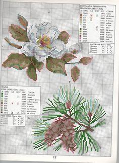 STATE FLOWERS (bbj0074)  Louisiana, Mississippi & Maine 1/1