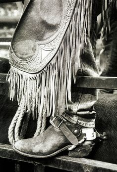 Boots and chaps, its cowboy hats, spurs and a lattigo. Its the ropes and the reins  And the joy and the pain  And they call the thing rodeo.