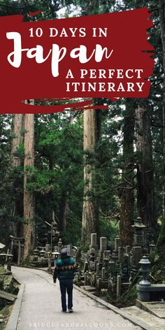The ultimate destination guide to exploring Japan. This ten day itinerary covers travel in Tokyo, Hakone, Shibu Onsen (where the snow m. Vacation Pictures, Travel Pictures, Travel Photos, Japan Travel Guide, Asia Travel, Tokyo Travel, Work Travel, Japan Beach, Japan Summer