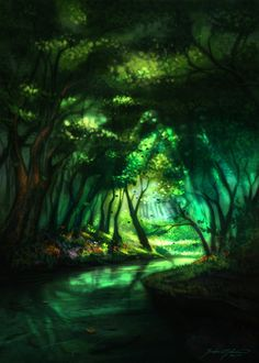 Enchanted Forest & Guiding Light | Ferdinand... |