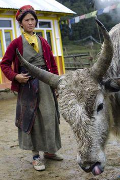 Tamang daily life . Nepal