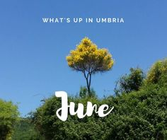 Four June events in Umbria you don't want to miss right now » Alla Madonna del Piatto Agriturismo - Assisi