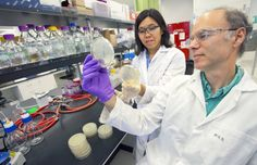 Sweet Smell of Success: JBEI Researchers Boost Methyl Ketone Production in E. coli