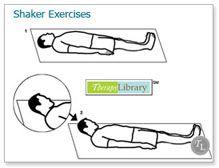 Shaker Exercises