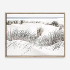 Featuring a coastal scene of sand dunes overlooking the ocean, this stretched photographic canvas art print. Photo Canvas, Canvas Artwork, Artwork Prints, Framed Art Prints, Poster Prints, Canvas Prints, Mdf Frame, Canvas Frame, Timber Mouldings