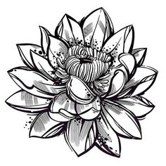 15 Lotus Flower Tattoo Design Sketches