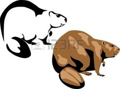 Beaver Stock Photos And Images Beaver Logo, North American Animals, Wood Badge, Animal Stencil, Nativity Crafts, Boy Scouts, Stock Pictures, Clipart, Royalty Free Images