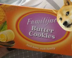 Such Cookies #doge #memes