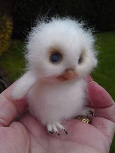 Fluffy bird by Irene-FeltVisual, via Flickr